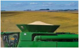 Depósito de grano lleno