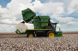 Recolectora de algodón CP690