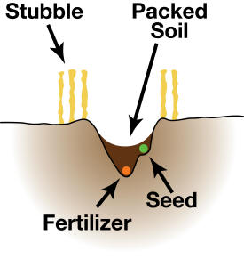 Single row/side banded soil profile