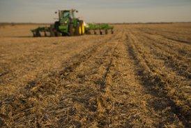 Finition de champ dans du chaume de soya