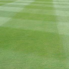 Reducción de las marcas de superposición - calle con césped Agrostis