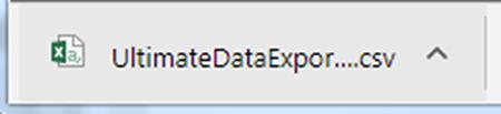 Open exported data in Excel