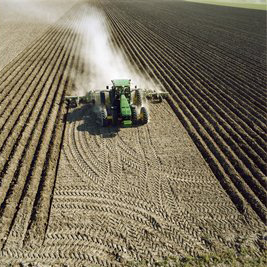 Planting requires precise accuracy