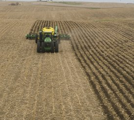 Strips in corn residue on rolling terrain