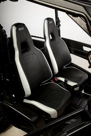 RSX with optional high-performance sport seats