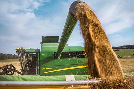 A velocidade de descarga de 100 l/s (2,8 bu/s) das ceifeiras-debulhadoras W440 e W440 PTC permite esvaziar um depósito de grãos cheio de 6000 e 7600 litros (170 e 216 bu.) em apenas 60 e 76 segundos.