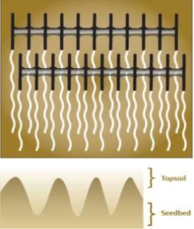 Нулевой угол атаки задних дисковых батарей, профиль верхнего слоя почвы и семенного ложа