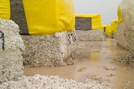 Çırçır sahası (ıslak geleneksel modüller)