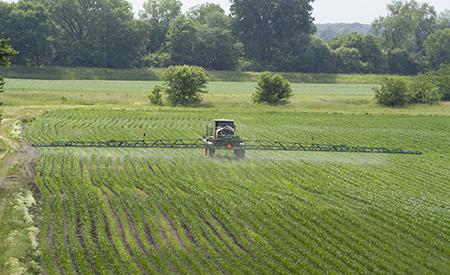 Pulverizador autopropulsado R4030 en funcionamiento en cultivos erguidos