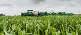 Système AutoTracRowSense dans le maïs de fin de saison