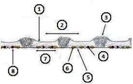 1830sur espacement de 25cm (10po), soc à ailes ouvertes de 30cm (12po), herse