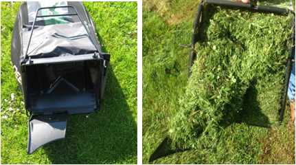 Leeren Sie das Grasaufnahmesystem und entfernen Sie loses Material vom Rand des Schachts