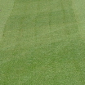 Marcas de traslape del rodillo - fairways con césped Agrostis