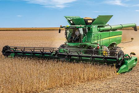 Harvesting in beans