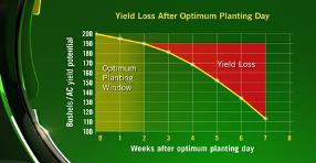 Yield loss after optimum planting day