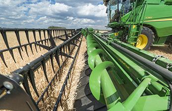 Cabeça de corte equipada com uma alimentação ativa de culturas onde se admite a parte superior em primeiro lugar com uma correia em vez de um sem-fim