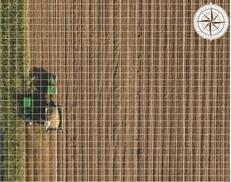 Inspección del campo mientras se cosecha