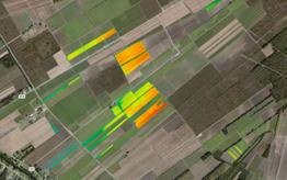 Mapa de rendimiento del campo de caña de azúcar