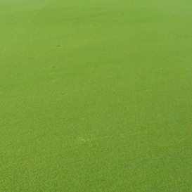 Reduction of overlap marks - paspalum fairway